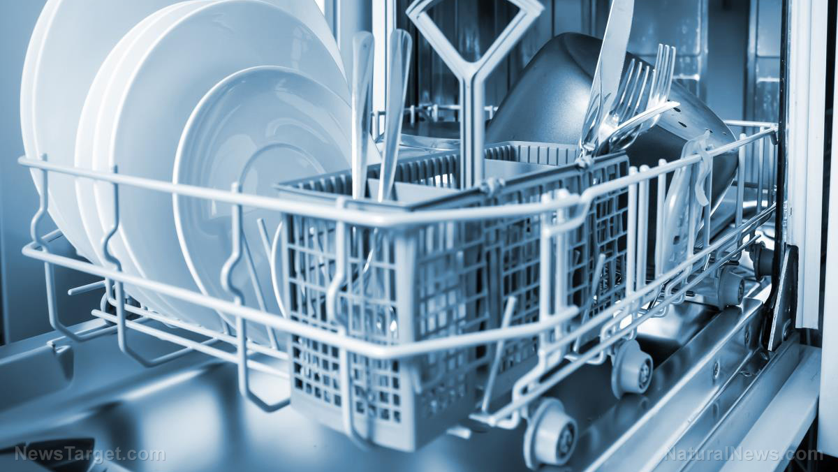 Do you clean your dishwasher? Research reveals deadly bacteria ...